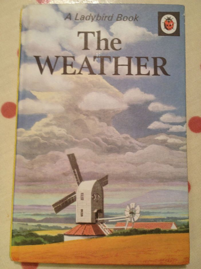 Ladybird Tuesday The Weather