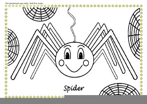colour in spider pdf - Pictures Of Spiders To Colour In