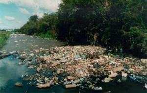 Poluição do Meio Ambiente