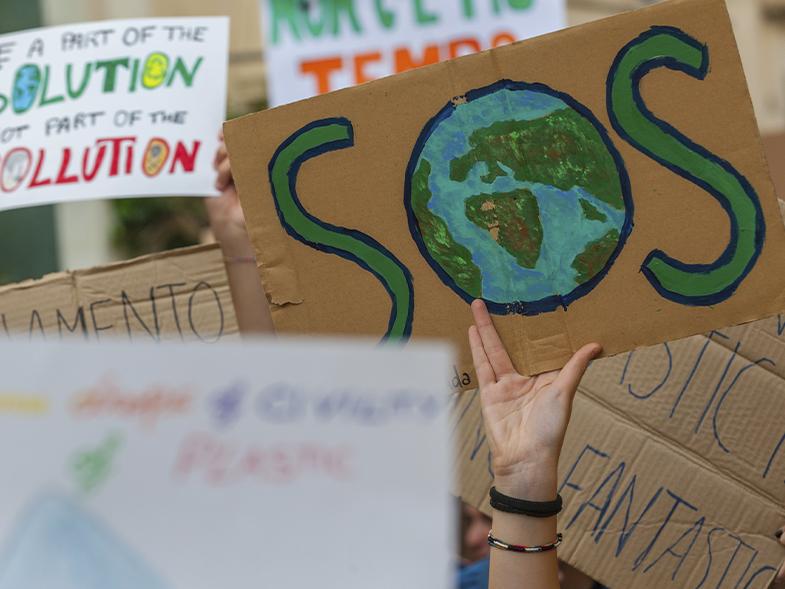 O que podemos fazer para combater as mudanças climáticas - Pensamento Verde