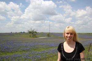 Texas0012