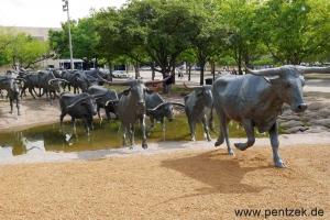 Texas0038