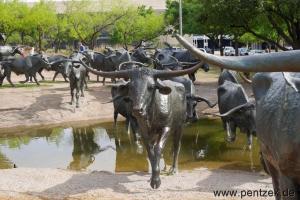 Texas0040