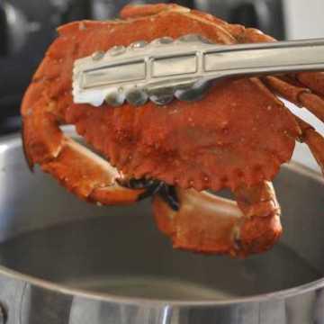 Roboti već zamenjuju radnike u industriji brze hrane