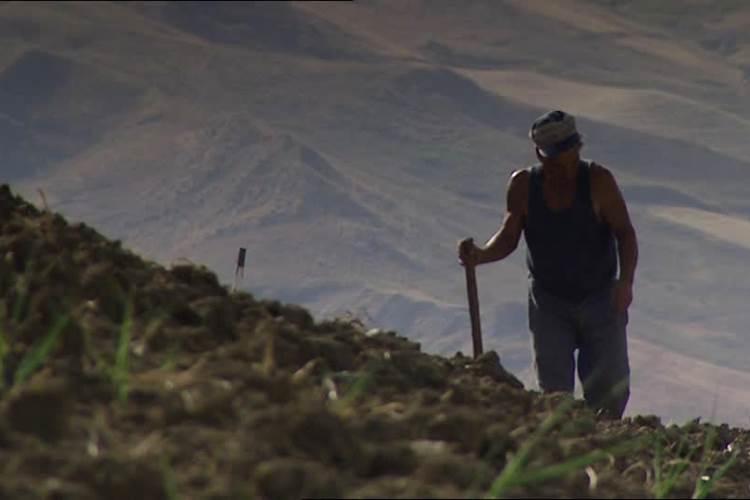 Poljoprivredne penzije i cena kafe u Skupštini – uvredljivo male