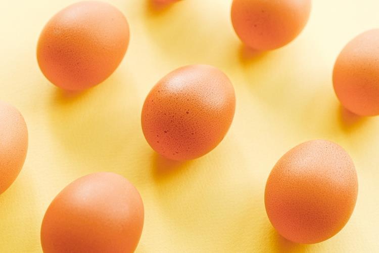 8 činjenica o jajima