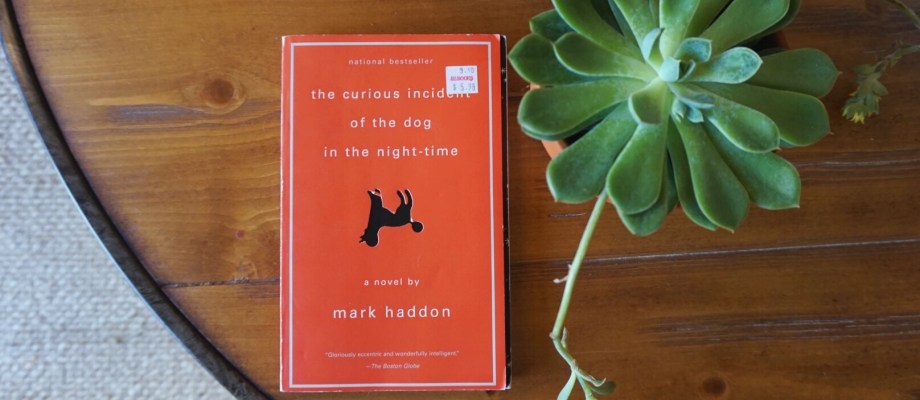 Book Review | The Curious Incident of the Dog in the Night-Time