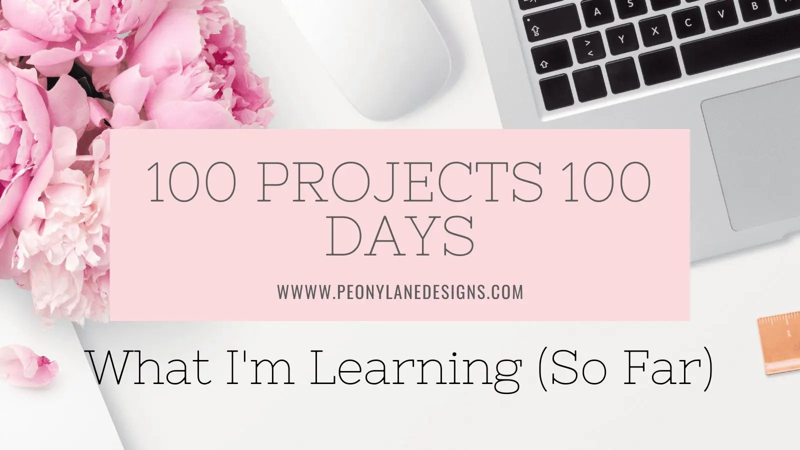 100 Projects 100 Days Challenge What I'm Learning (so far)