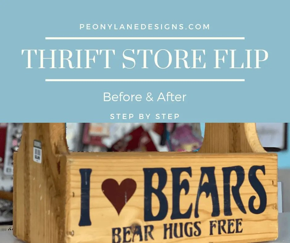 Thrift Store Flip Before & After