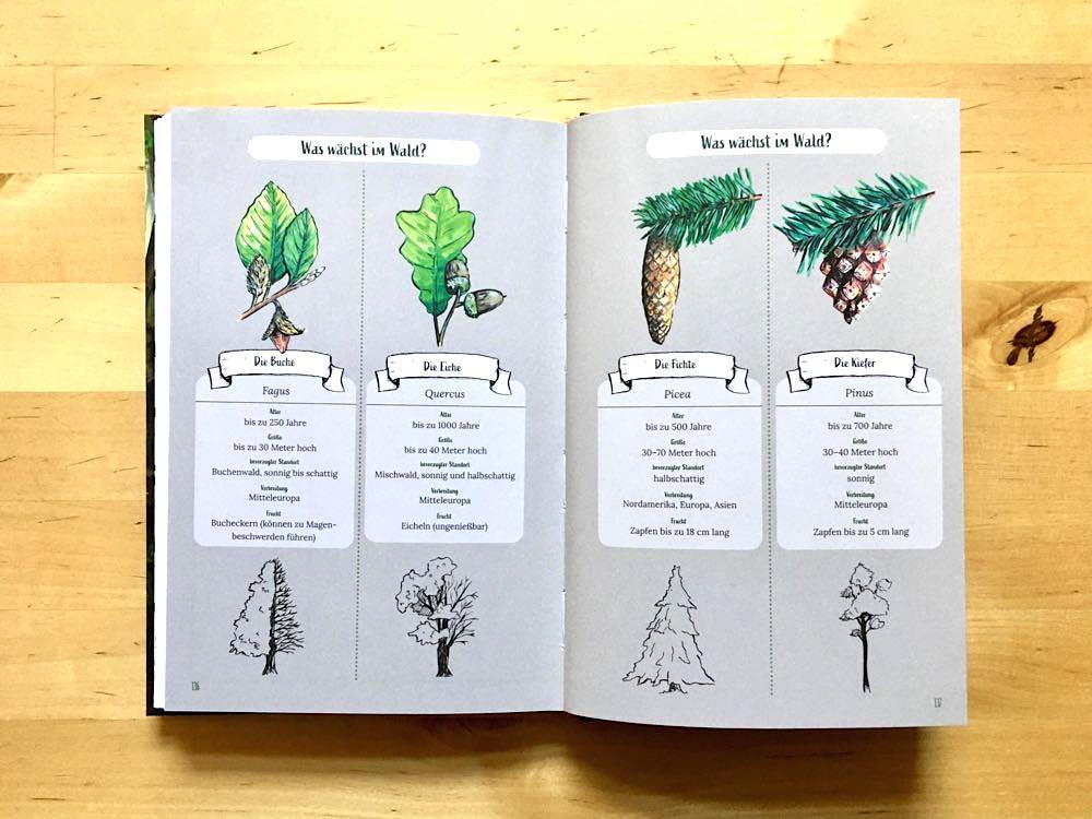 Waldtagebuch Reise-Know-How-Verlag