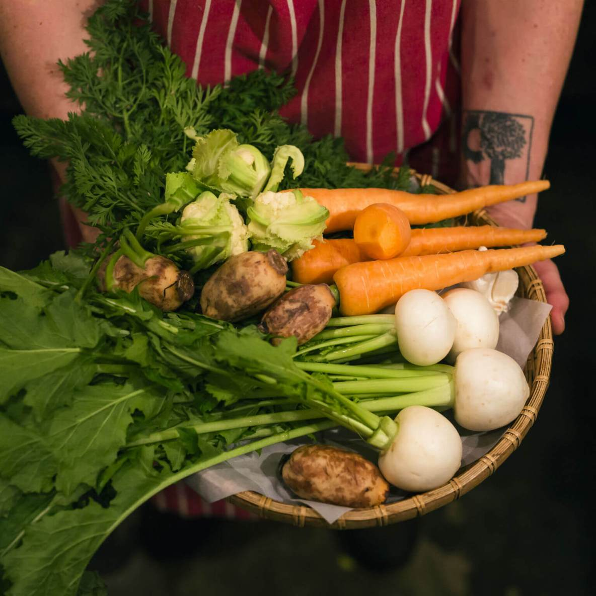 Vegetable-centric restaurant that feels like the chef's home dining room