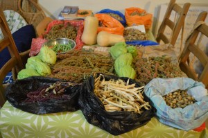 Caribbean Seeds and foods: old species for new lands: Strood Allotment harvest, 2016
