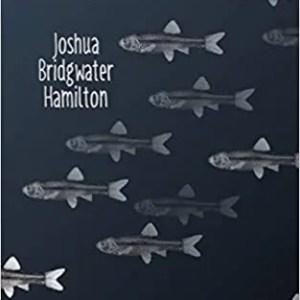 Rain Minnows by Joshua Bridgwater Hamilton