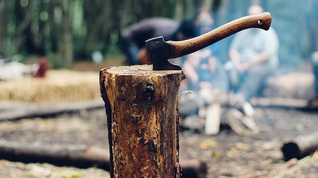 Modi government decides to cut 17,000 trees in South Delhi