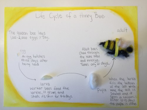 small resolution of Bee \u0026 Honey Unit Study   Living Books