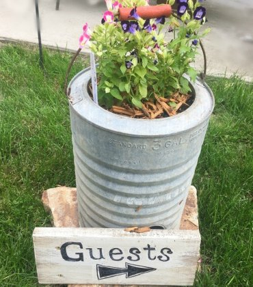 When the plants start to grow-peppermillbnb-guests