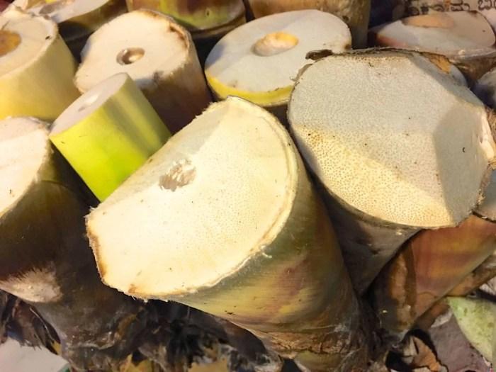Fresh Bamboo Shoots at Jayanagar Market, Bangalore