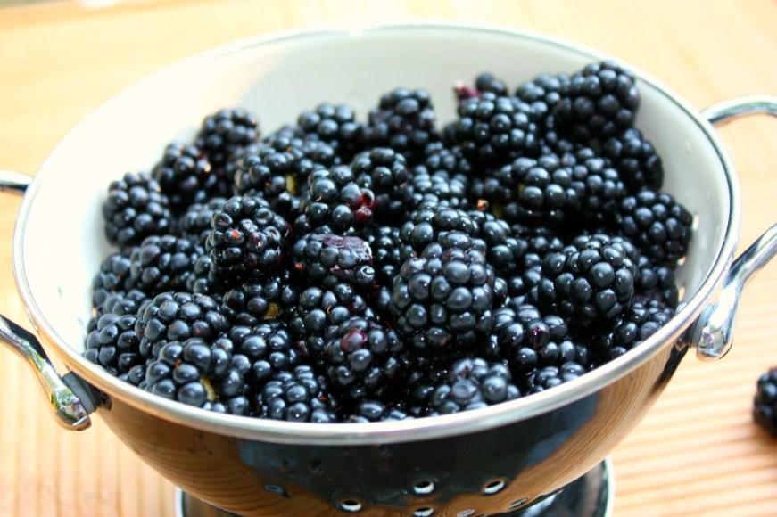 Blackberryoatmeal 001FF