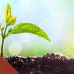 dynamics of biblical change ccef