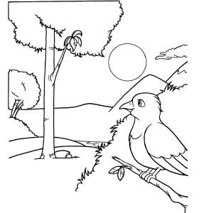 Vizatime dhe figura per ngjyrosje per femije 2