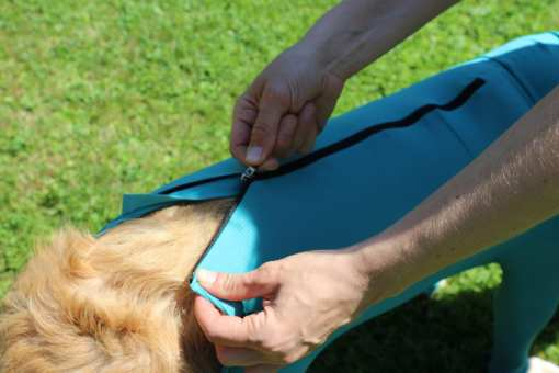 Hundebody mit zipper