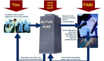 Flow of Mutual Fund Investments