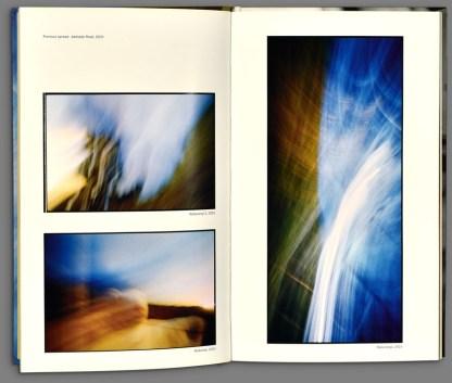 For Wellington by Viggo Mortensen