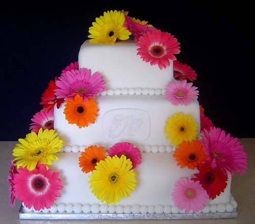 Three Iter Square Fondant Wedding Cake Decorated With Pink Yellow Orange And Red Gerbera Daisies Perfect For A Spring
