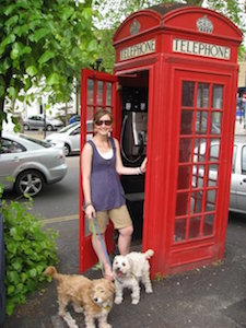 Elyse Macartney with her two terrier dogs at a Red Telephone Box.