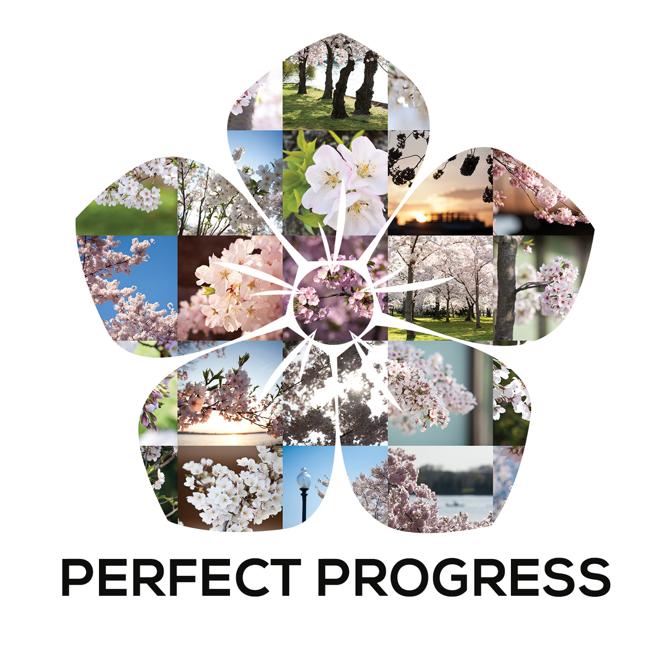 Perfect progress investments limited opus besiktning kalmar investments