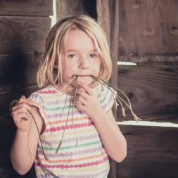 An old barn provides a great backdrop for children's portraits.
