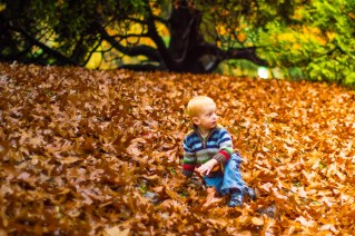 Playing in the leaves for the first time!