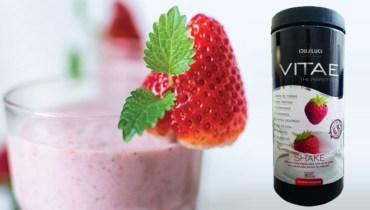 Vitae Shake Emagrecedor (melhor shake para emagrecer)