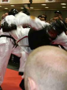ATA 2009 World Championship - Mr. Matthews roundkicking his opponent to the head