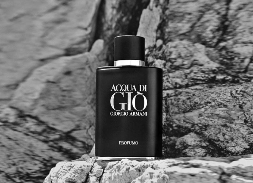 Perfumart - post sobre Acqua di Gió Profumo 4