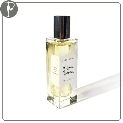 Perfumart - resenha do perfume Fueguia Alguien Sueña