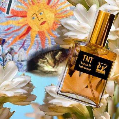 Perfumart - resenha do perfume PK Perfumes - TNT