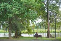 Chinese Garden & Japanese Garden, Singapore - PergiDulu.com