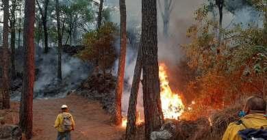 Sin control, incendio en reserva ecológica de Uruapan