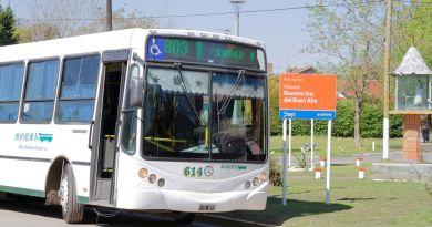 linea 603