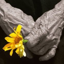 Documental - ¡Basta ya! Colombia: Memorias de guerra y dignidad.