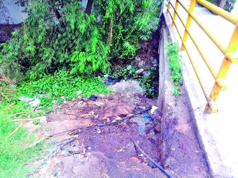 Un foco de infección representa el dren que se encuentra a un costado del Libramiento La Joya, en la intersección con Francisco Mendoza, en la colonia Plan de Ayala, pues se ha convertido en un tiradero de residuos de comida de demás tipo de basura.