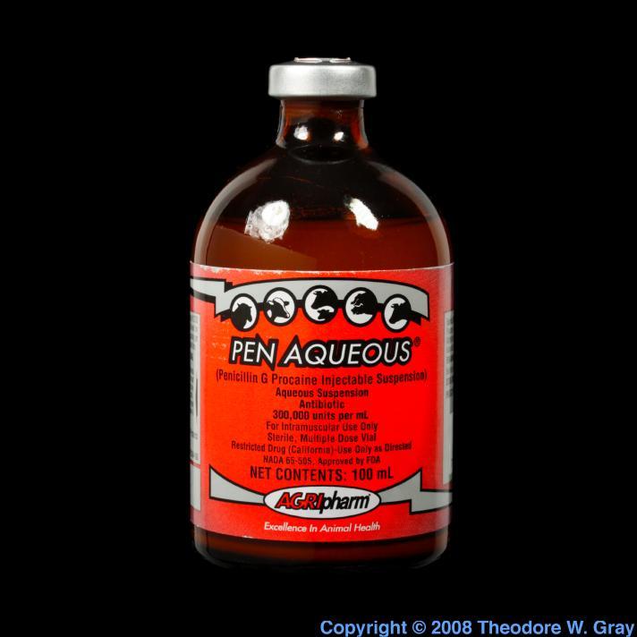 Sulfur Horse penicillin