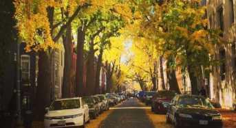 10 όμορφοι δρόμοι των ΗΠΑ