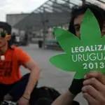 130801083547_uruguay_marijuana_304x171_afp_nocredit
