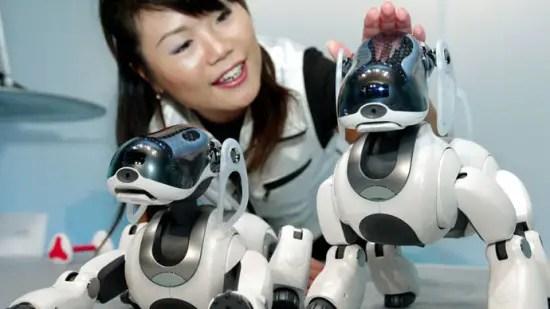 Aibo-robot-dog3-550x309