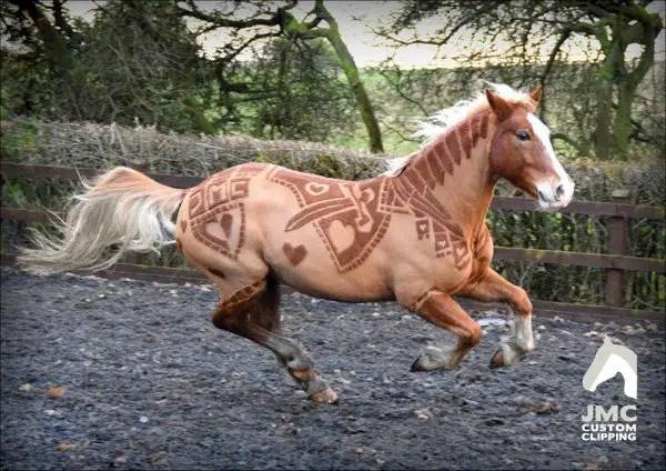JMC-Equestrian-clipping-600x424