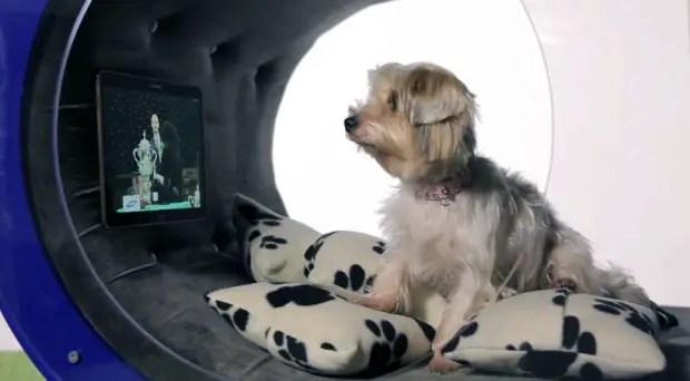 Samsung-Dream-Doghouse2