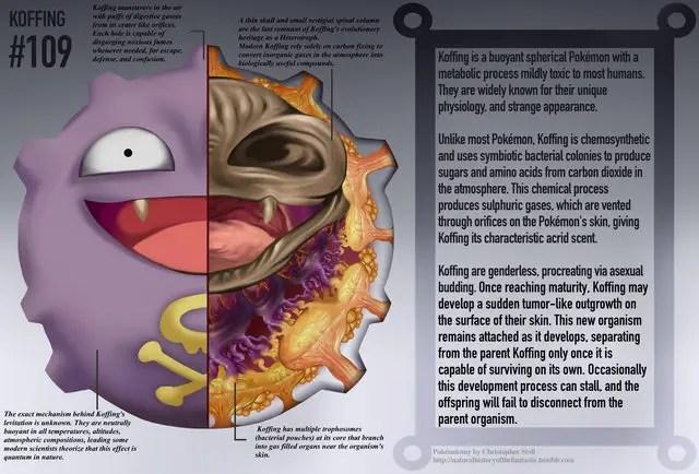 Crean un manual de anatomía… de Pokémon – Periodismo . com