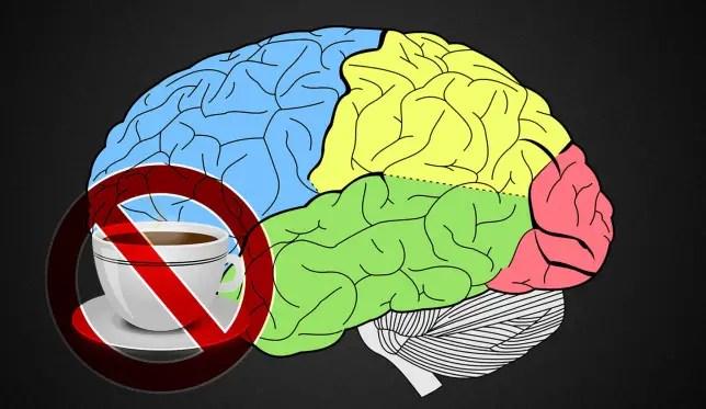¿La postura afecta el flujo sanguíneo al cerebro?
